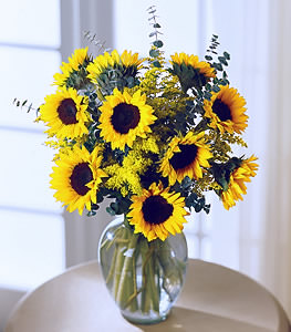 Radiant Sunflowers
