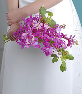 This bouquet is for the bride looking for a bold yet elegant splash of color. Bright fuchsia hues create stark contrast while the whimsically shaped blossoms soften the bouquets appearance.