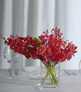 Simplicity is redefined by using a cluster of casual burgundy mokara orchids to enhance a peaceful, soothing atmosphere.