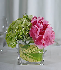 A perfect fusion of warm and cool colors is demonstrated by the pairing of green and pink hydrangea, accompanied by a single green tea leaf.