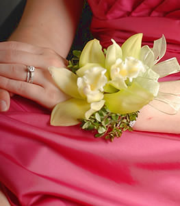 Pale green cymbidium orchids embody a light effervescent aire in this stylish corsage.
