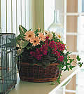 Traditional European Garden BasketTXTF127-1