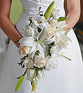 Elegantly arranged, this monochromatic bouquet of white lilies, cream colored roses and white lisianthus offers a soft and graceful appearance.
