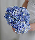 Using only hydrangeas, this explosion of blue adds a chic yet inexpensive style to any wedding day.