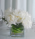 Snowballs of white peonies stir a blizzard of life and add an extra layer of class to any space.