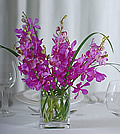 Dramatic purple mokara orchids shine through the windows created by the tall, slender bear grass.