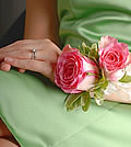 This small cluster of two soft pink roses with greenery is surely a traditional presentation.
